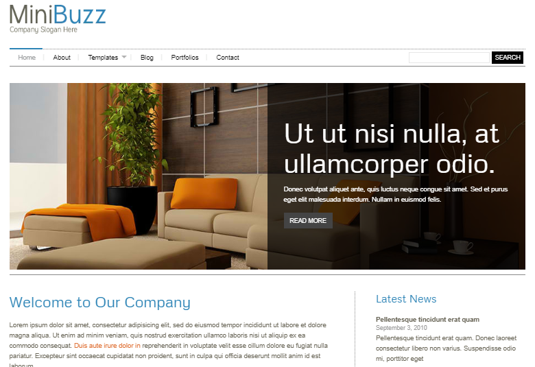 MiniBuzz Minimalist WordPress Theme