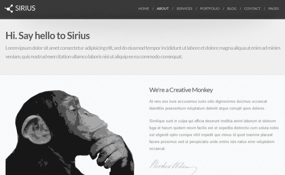 Serius Minimalist WordPress Theme