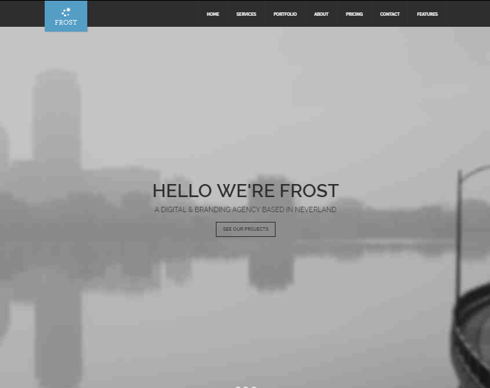Frost WordPress Theme