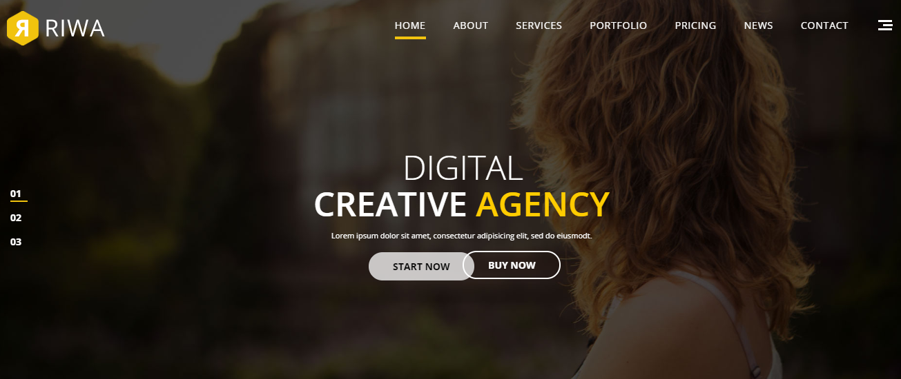 Riwa WordPress Theme